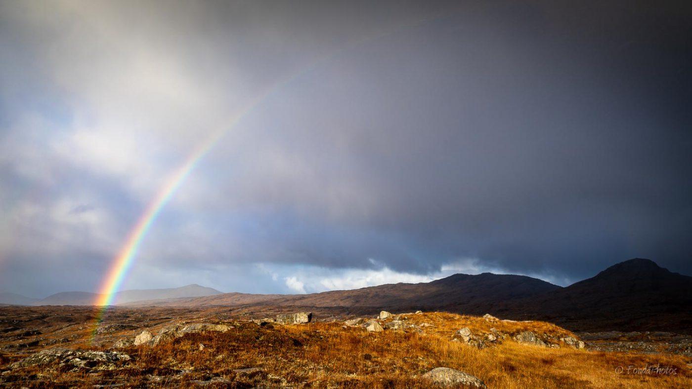 Harris, rainbow