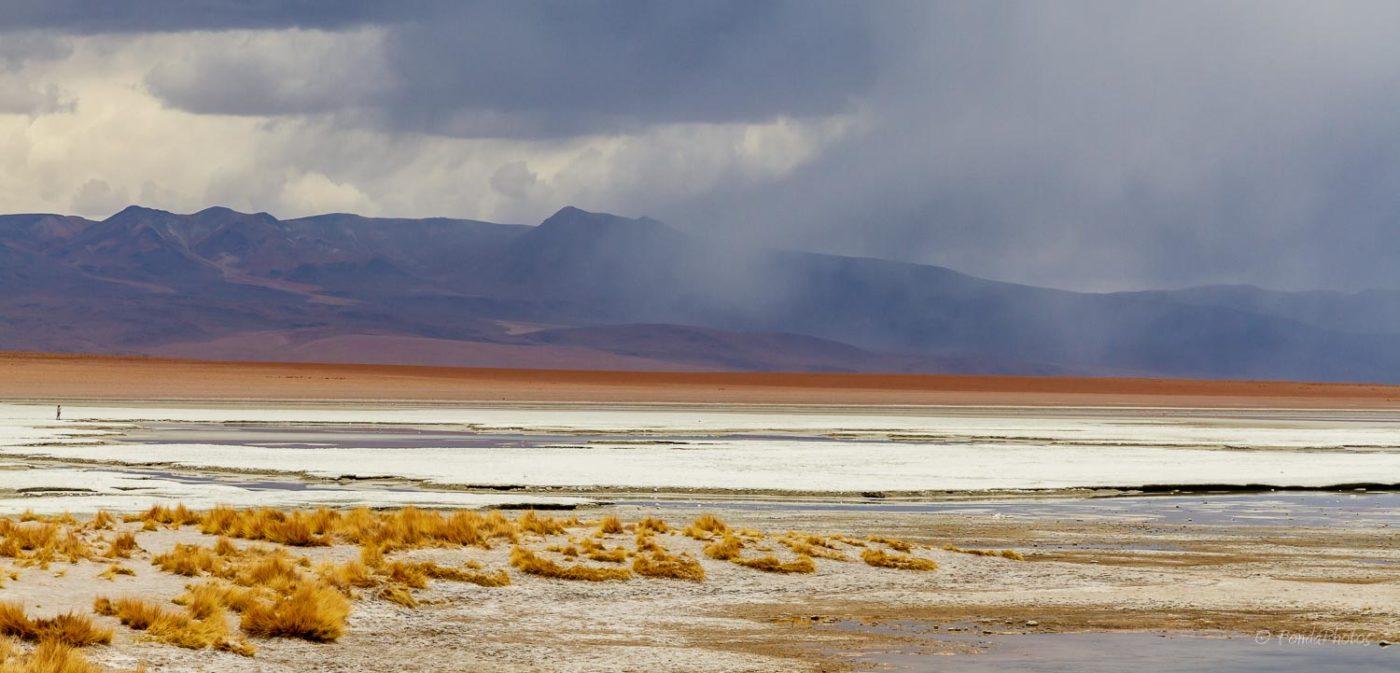 Salar de Chalviri, Bolivia