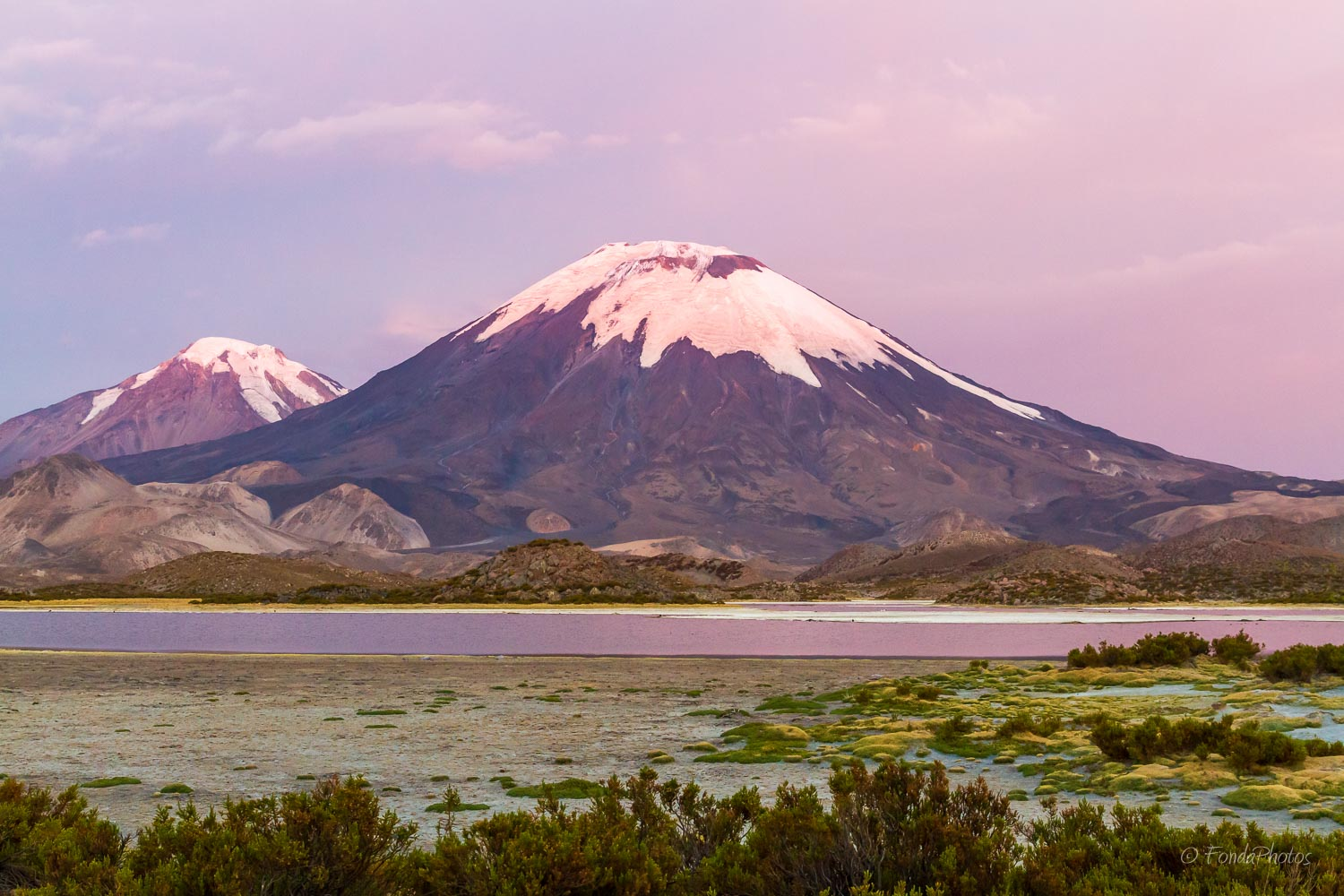 Parinacota and Pomerape volcanoes from Laguna Cotacotani