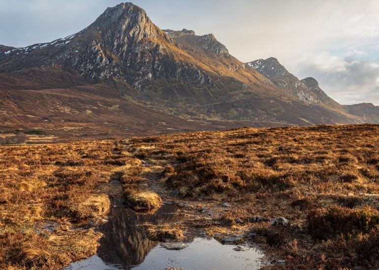 Ben Loyal, puddle reflection, square